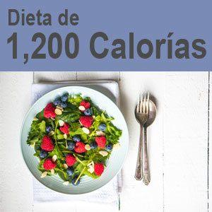 Dieta de 1600 kcal diarias